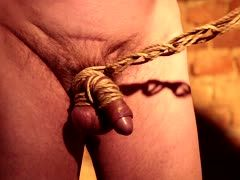 Useless dick is hogtied
